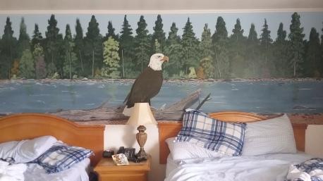 Eagle room