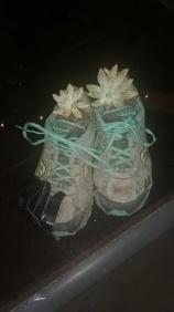 plant shoes
