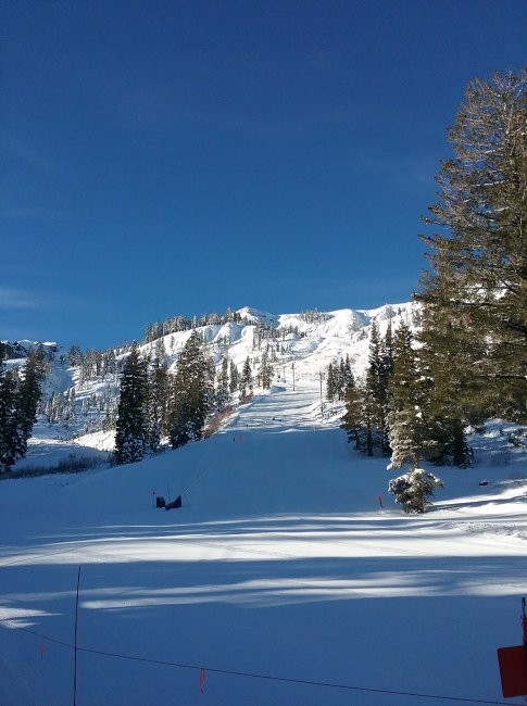 Alpine Meadows Morning
